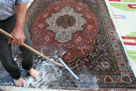 Professional Area Rug Cleaning Benefits Of Professional Area Rug Cleaning In New York City Websnep