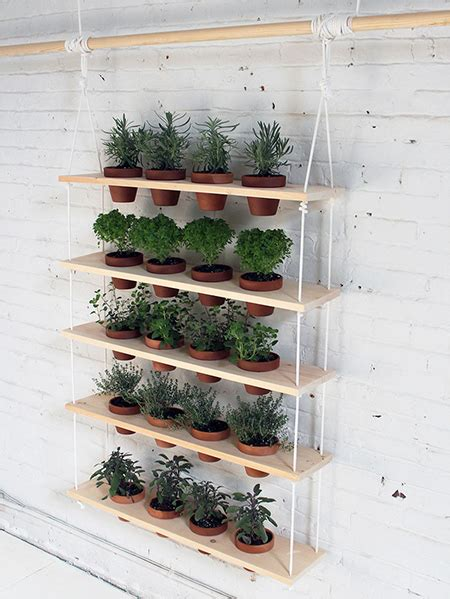 Home Dzine Garden Ideas Hanging Herb Garden Hanging Wall Herb Garden