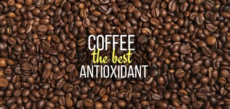 combine the best coffee beans with the best coffee mugs online coffee is the best antioxidant coffee beans shop