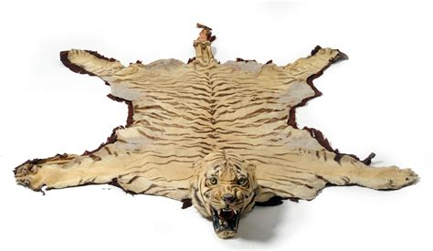 real tiger rugs for sale bengal tiger rug rugs ideas