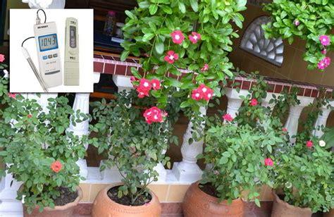 daftar ppm tanaman bunga  tanaman herbal