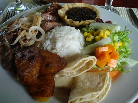 costa rica cookbook learn to cook costa food for newbies books curious about costa food culture