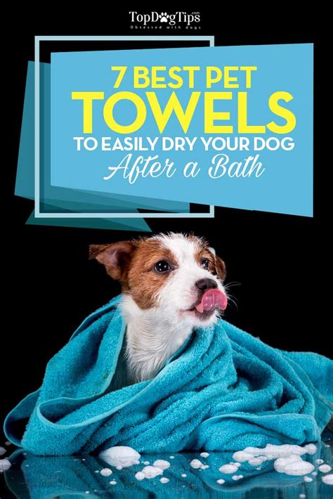how to get a dog to use the bathroom outside best dog towel top 7 choices for drying dogs after a bath
