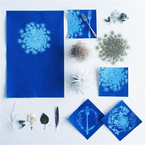 How To Make Cyanotype Paper - beautiful curiously useful sun prints diy improvised