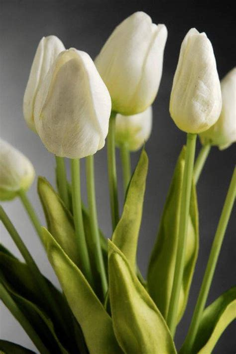 Mirror Pedestals Natural Touch Mini White Tulip Bouquet 14in