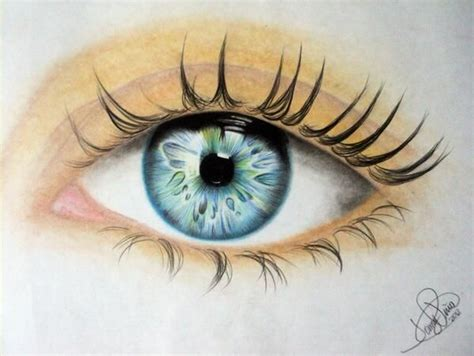 imagenes de ojos con flores 17 best images about hojos on pinterest an eye eyes and