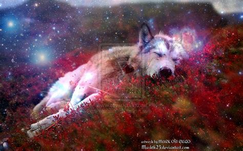 wallpaper galaxy wolf galaxy wolf wallpaper by markth23 on deviantart