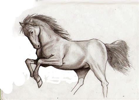 caballo a lapiz dibujos de animales rasta colours junio 2010
