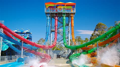 waters and the wild wet n wild water world in oxenford queensland expedia