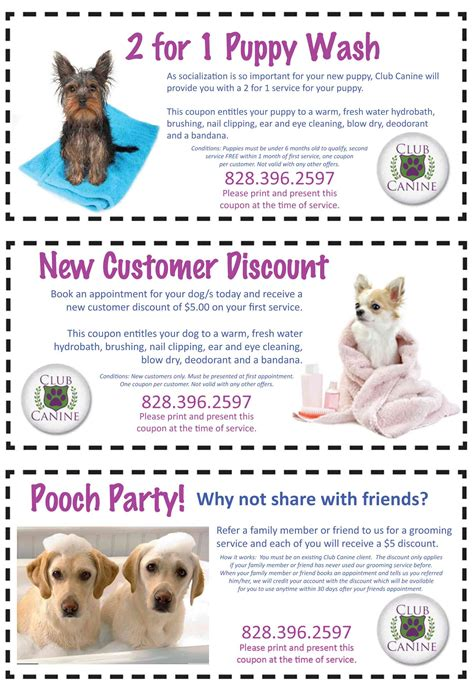 groupon grooming club canine grooming coupons