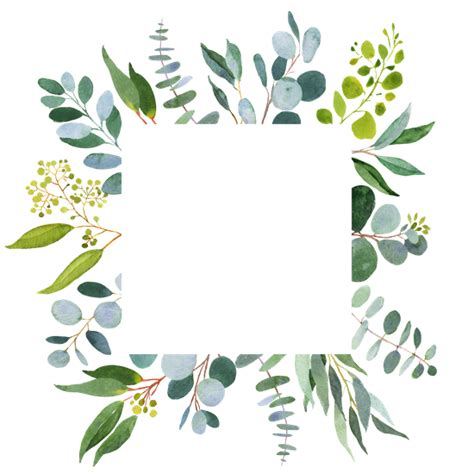 canva background transparent 1000 free premium greenery stock photos