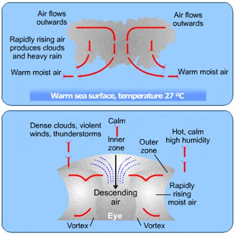 how tropical cyclones form | www.pixshark.com images