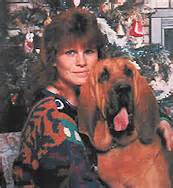 bloodhound puppies for sale in california puppies for sale bloodhound bloodhounds f category in lancaster california