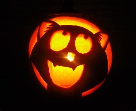 cat pumpkin carving ideas  pinterest