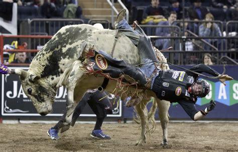 bull riding backgrounds   pixelstalknet