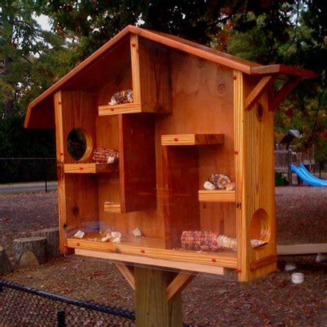 squirrel house squirrel house for jcc north dakota pinterest