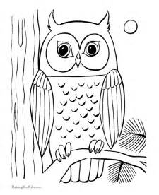 owl coloring pages owl coloring pages coloring home