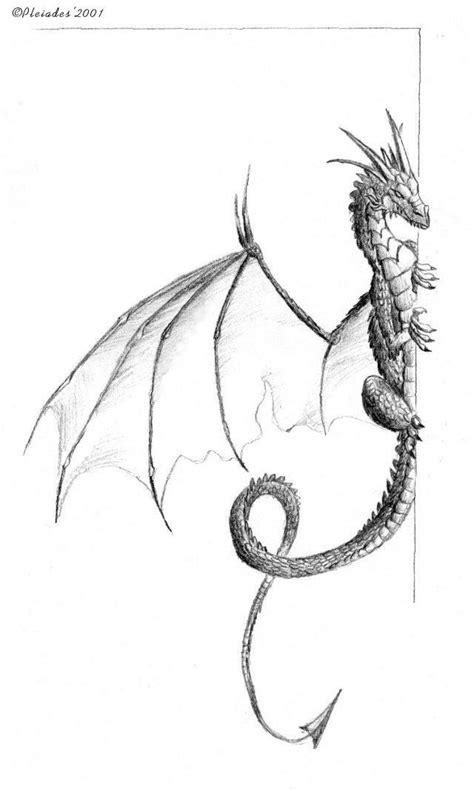 sketch book zeichnen die besten 17 ideen zu drachen zeichnen auf