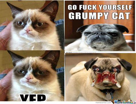 The Smile Of The Cat grumpy cat does smile by suzanne cottrell 3 meme center