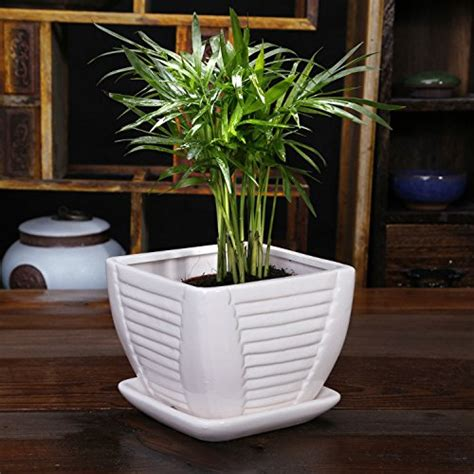 Planters Without Drainage Holes by Ceramic Pots Drainage Reversadermcream