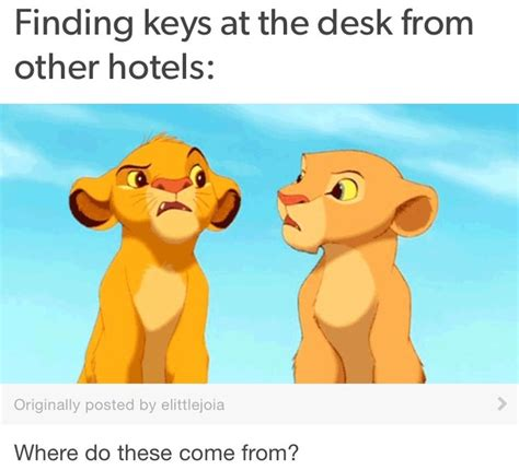 lion desk vs wise agent 248 best images about life as a front desk agent on