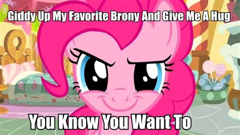 Know Your Meme Brony - giddy up my favorite brony and give me a hug my little