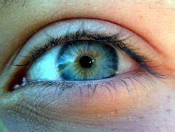 how many colors can the human eye distinguish eye new world encyclopedia