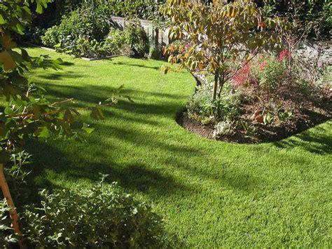giardino prato inglese prato inglese prato giardino prato inglese sotto un