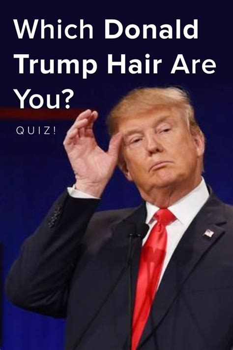 donald trump quiz questions quiz which donald trump hair are you donald o connor
