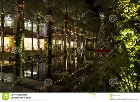 pool city christmas trees arizona shopping mall tree and lighted palm trees stock image image of