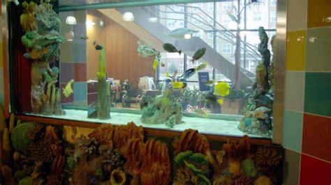 chicago custom aquariums fish tank company aquarium design