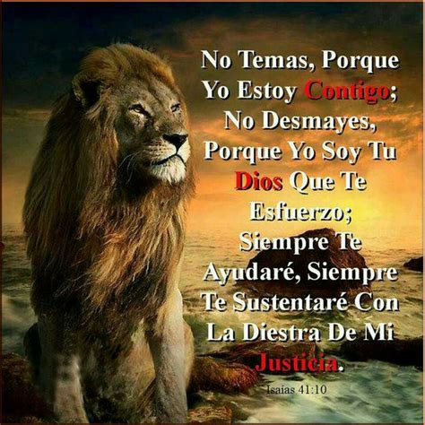 imagenes de leones de zona ganjah isaias 41 10 versiculos biblicos pinterest