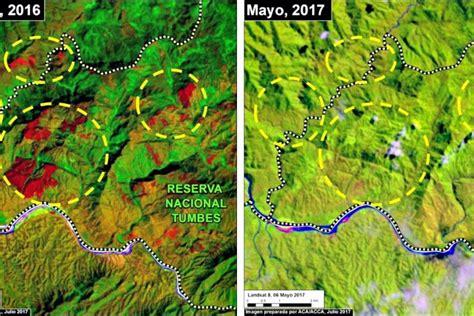 imagenes satelitales bosques per 250 im 225 genes satelitales eval 250 an recuperaci 243 n de bosques