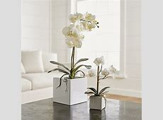 Faux Orchids | Crate and Barrel 1 800 Flowers Reviews