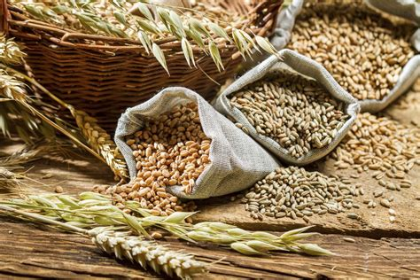 whole grains high in fiber the real difference between wheat germ and wheat bran