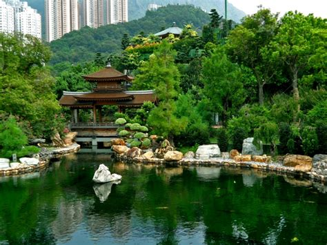 Garden Hong Kong by Steven Katz Official Website Travels