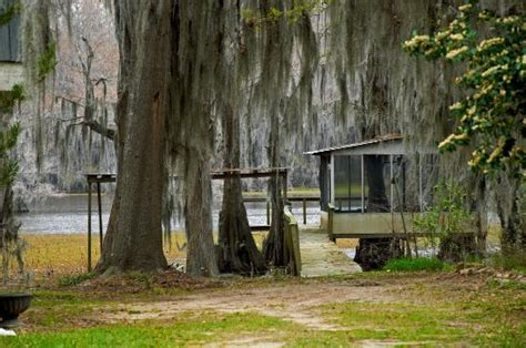 Caddo Lake State Park Cabins by Caddo Lake Picture Of Caddo Lake State Park Karnack