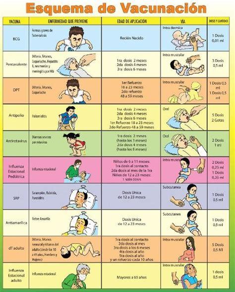 norma de inmunizaciones 2016 esquema programa ampliado de inmunizaci 243 n