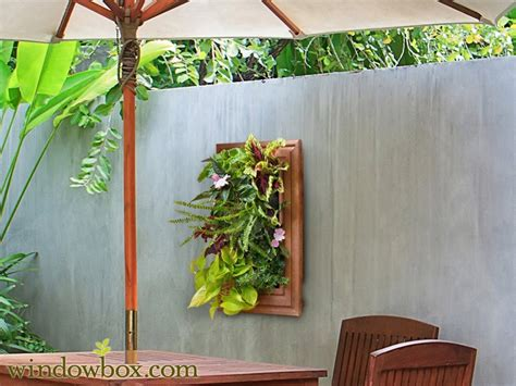 indoor living wall kit  traditional frame
