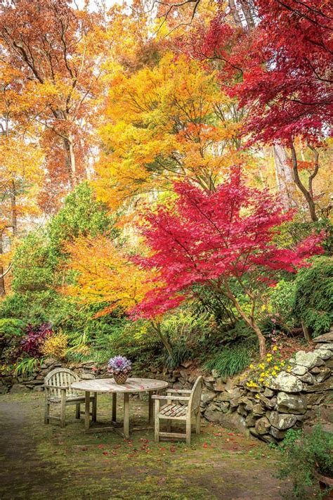 autumn garden 17 best ideas about autumn garden on pinterest summer