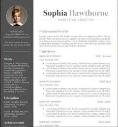 Professional Resume Templates Free by Professional Cv