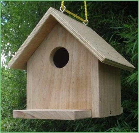 bird house plans nz plans tree swallow birdhouse plans
