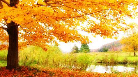 heavenly fall landscape widescreen wallpaper wide