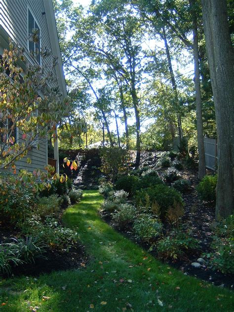 woodland slope garden terrascapes