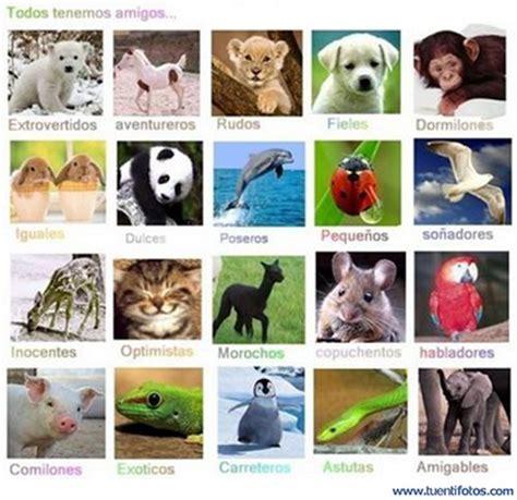 imagenes animales que respiran por los pulmones los animales agosto 2012