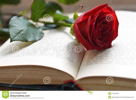 libro red rosa a graphic rosa rossa sul libro aperto fotografia stock immagine 51148108
