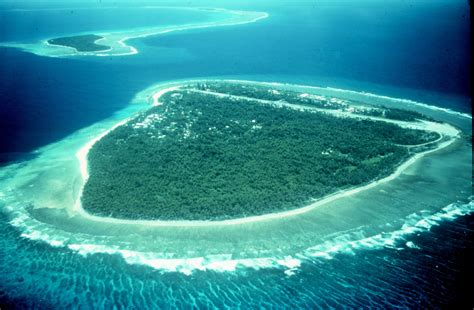 Bahamas Lost In The Light Environmental Issues With Coral Reefs Wikipedia