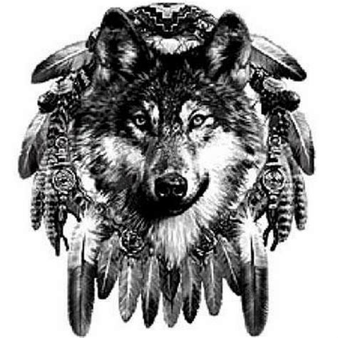 wolf feather tattoo designs 25 dreamcatcher wolf designs images and pictures