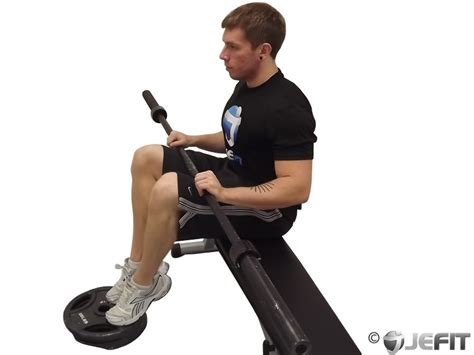 seated calf raise home barbell seated calf raise exercise database jefit