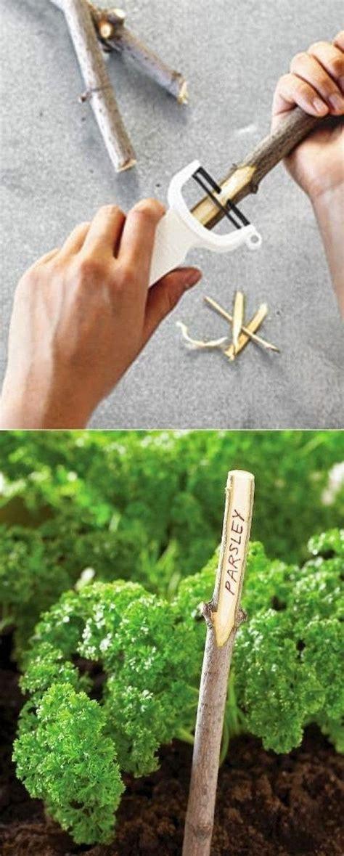 gartengestaltung gemüsegarten 220 ber 1 000 ideen zu baumscheiben deko auf